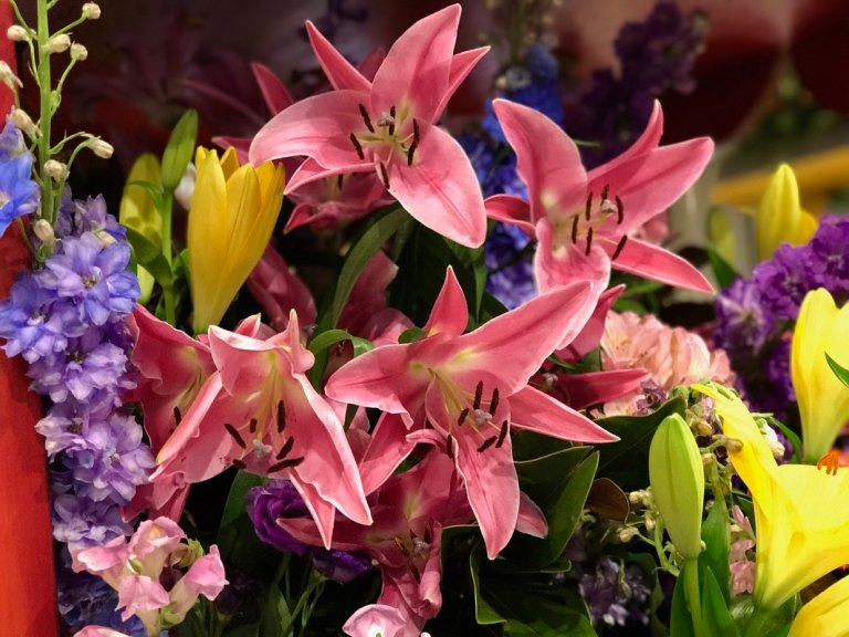 Macy's Flower Show lilies and colorful flowers