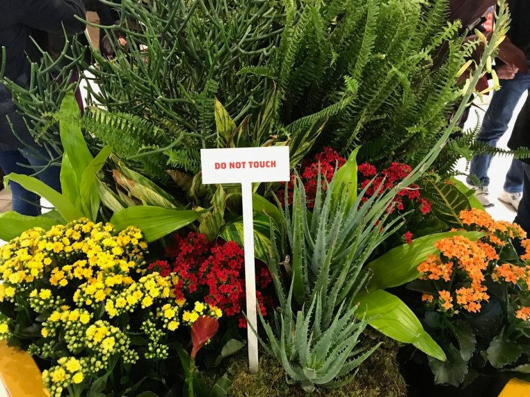 Macy's Flower Show flowers and do not touch sign