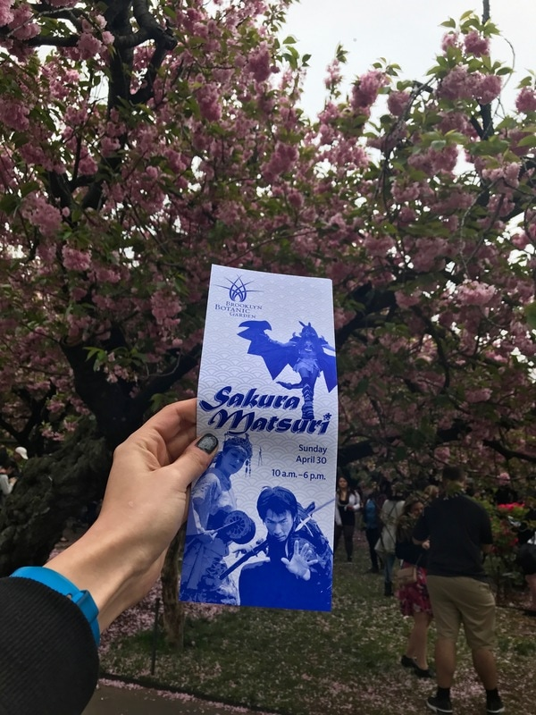 Brooklyn Cherry Blossom flyer and map