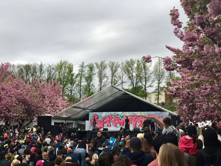 Performance stage at Brooklyn Botanical Gardens Cherry Blossom Festival